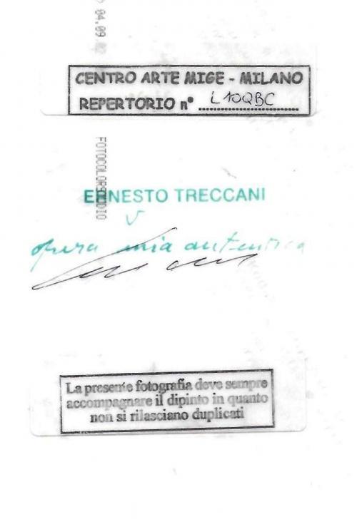 Treccani Ernesto - Senza titolo